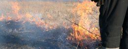 Рятувальники Новомосковська закликають не спалювати суху рослинність