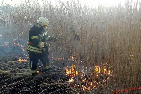 На Новомосковщині безвідповідальні люди знову підпалили очерет